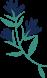 Fleuriste Miss Acacia - Bouquets et compositions florales